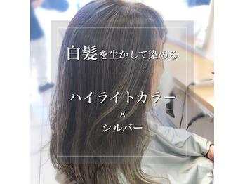 白髪を生かすハイライトの画像
